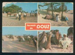 Túnez. Douz. *Souvenir De Douz* Ed. Chamam. Circulada 1993 - Túnez