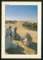 Túnez. Douz. *Le Repos De La Carvane* Ed. Tunisie Lumiere Nº 241. Nueva. - Túnez