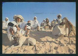 Túnez. Douz. *Les Sloughis Et Leur Maîtres* Ed. Tanit Nº 556. Circulada 1993. - Túnez