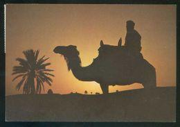 Túnez. Matmata. *Coucher De Soleil...* Ed. Kahia Nº 1740. Circulada 1983. - Tunisia (1956-...)