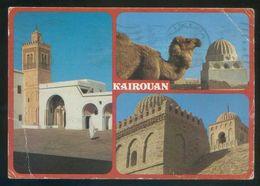 Túnez. Kairouan. Circulada 1986. - Túnez
