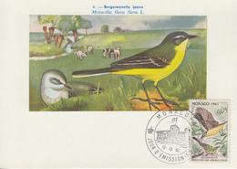 Carte  Maximum  1er  Jour   MONACO    Bergeronnette   1962 - Sperlingsvögel & Singvögel