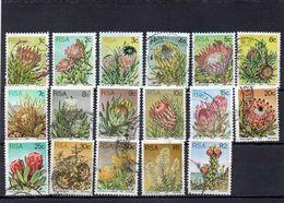 AFRIQUE DU SUD 1977 O 50 C. PLI-CREASE - Afrique Du Sud (1961-...)