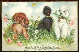"""Nederland 1959 Ansichtkaart """"Hartel;ijk Gefeliciteerd - Unclassified"""