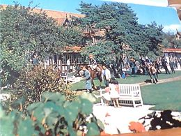 FRANCE   L'HIPPODROME DE CLAIREFONTAINE SPORT  HIPPIQUE   N1970 GN21484 - Deauville