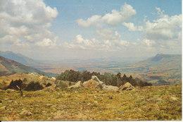 Swaziland Postcard Sent To Denmark 4-12-1989 - Swaziland