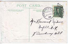 HAWAII  POSTAL CARD  CD.  HONOLULU,H.  ISLS.  1908 - Hawaii