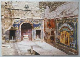 ERCOLANO - Casa Di Nettuno E Anfitrite - Mosaici - Ercolano