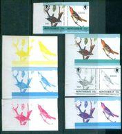 A60- Montserrat Color Proof. Birds. - Climbing Birds