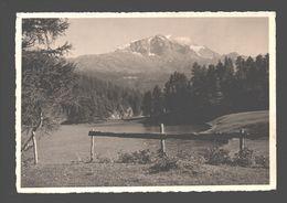 Ober Engadin - Piz Corvatsch - 1936 - GR Grisons