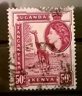 FRANCOBOLLI STAMPS UGANDA KENYA 1954 REGINA ELISABETTA - Uganda (1962-...)