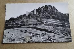 HYERES LES PALMIERS - Les Ruines Du Château ( 83 Var ) - Hyeres