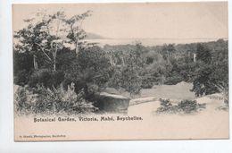 MAHE (SEYCHELLES) - BOTANICAL GARDEN - VICTORIA - Seychelles
