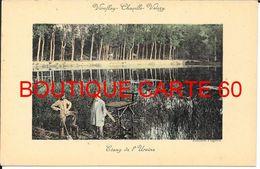 78- VIROFLAY - CHAVILLE - VELIZY- ETANG DE L'URSINE - Viroflay