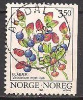Norwegen  (1995)  Mi.Nr.  1175 Y Gest. / Used  (2ev18) - Gebraucht