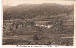 D42 - MASSIF DU MONT PILAT - CHAUMIENNE PRES DU COL DE L'OEILLON - Mont Pilat