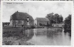 Moulin De Seloignes - Momignies