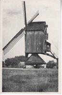 Gestelse Dreef Molen - Meerhout
