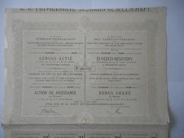 Chemins De Fer Du SUD De L'AUTRICHE , ROYAUME LOMBARD VENETIEN 1885   WIEN VIENNE - Railway & Tramway