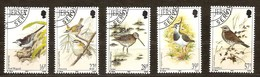 Jersey 1992 Yvertn°  557-61  (°) Oblitéré Used Cote 11 Euro  Fauna Oiseaux Vogels Birds - Jersey