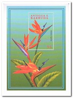 Antigua & Barbuda 2000, Postfris MNH, Flowers - Antigua En Barbuda (1981-...)
