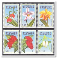 Antigua & Barbuda 2000, Postfris MNH, Flowers, Orchids - Antigua En Barbuda (1981-...)