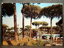 (FG.R74) ISOLA D'ISCHIA - IL PORTO - PINETA, PASTICCERIA CALISE (NAPOLI) VIAGG.1967 - Napoli (Napels)