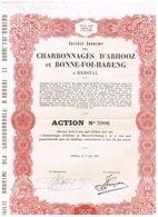 Action Ancienne - Sté Anonyme Des Charbonnages D'Abhooz Et Bonne-Foi Hareng - - Mines