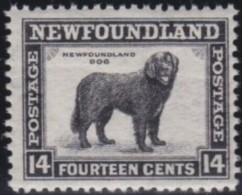 Newfoundland          .   SG   .      216          .      **     .      MNH    .   /   .     Postfris - Terre-Neuve
