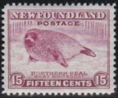 Newfoundland          .   SG   .      217      .      **     .      MNH    .   /   .     Postfris - Newfoundland