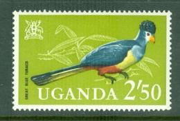 Uganda: 1965   Birds   SG123    2s 50    MH - Uganda (1962-...)