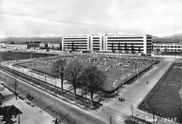 "07266 ""TORINO - FIAT (MIRAFIORI) - SACAT"" ANIM., AUTO ANNI '50. CART. ORIG. NON SPED. - Multi-vues, Vues Panoramiques"