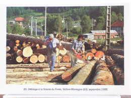 DEBITAGE A LA SCIERIE DU FOREZ, VOLLORE-MONTAGNE (63), SEPTEMBRE 1988 - 500 EX. / ETAT NEUF - Other Municipalities