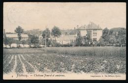 FLOBECQ - VLOESBERG = CHATEAU JOURET ET ENVIRONS - Flobecq - Vloesberg