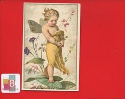 Jolie Chromo Bourgerie Bébé Ange Papillon Pas Du Tout Effeuillage Marguerite - Chromos