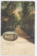 NICE - Villa Arson Et Jardin Du Grand Hôtel - St Barthélemy - Dos Simple- Circulée 1917 - - Cafés, Hoteles, Restaurantes