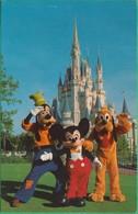 Etats-Unis - Orlando -  Walt Disney World - You're As Welcome As Can Be - Mickey Mouse, Goofy, Pluto - Orlando