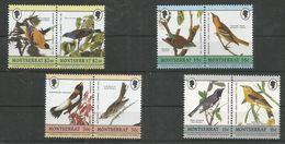 MONTSERRAT - MNH - Animals - Birds - Nature - Pájaros