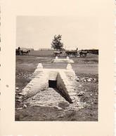 Foto Pferdegespanne Und Brücke - Osteuropa - 2. WK - 4*5,5cm (33026) - War, Military