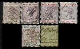 NATAL, Revenues, */o M/U, F/VF, Cat. £ 16 - South Africa (...-1961)