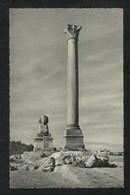 Egypt Old Black & White Picture Postcard Alexandria Pompey Pillar View Card - Alexandria