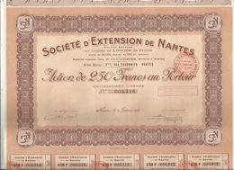 Action De 250 Francs , Société D'Extension De NANTES ,1928 ,  Frais Fr 1.95 E - Actions & Titres