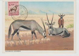 Carte Maximum Antilope - FDC