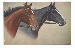Horse Alpha Postcard Artist Signed  2025. Unused - Chevaux