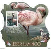 SIERRA LEONE 2017 - WWF Flamingo S/S. Official Issue - W.W.F.