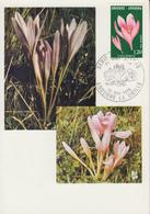 Carte  Maximum  1er  Jour  ANDORRE   Flore  :  COLCHIQUE   1975 - Maximumkarten (MC)