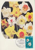 Carte  Maximum  1er  Jour  ANDORRE   Flore  :   NARCISSE   1974 - Maximumkarten (MC)
