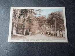 Cpa 91 Foret De Senart  Chemin Du Chène D'antin - Autres Communes