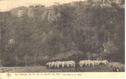 Han-sur-Lesse - CPA -  Grotte De Han - Chemin De Fer - België