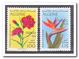 Algerije 1974, Postfris MNH, Flowers - Algerije (1962-...)